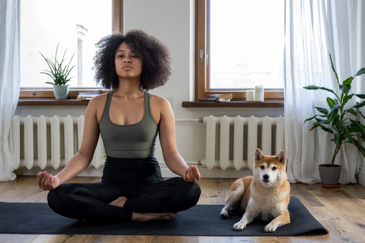 great meditation guide